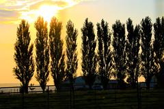 MELBA-OWYHEES-30 (Gerry Slabaugh) Tags: melba idaho gerryslabaugh farming country