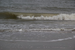 IMG_1070 (EadaoinFlynn) Tags: curracloe beach sea ireland irishsea wexford