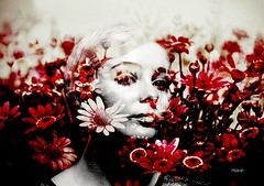 Good morning happy day my friends   #photography #women #face #edit #art #collage #flowers #picture #dream #fantastic #artwork #freeart #mask #graphicdesign #artpeople #artpeoplegallery #editedstepbystep #editedphoto #stepbystep #bokeh #holga #popart #p (mrbrooks2016) Tags: stepbystep freeart face picture collage editedphoto mask graphicdesign photography dream popart artwork artisticportrait holga art portrait edit editedstepbystep fantastic women bokeh artpeople flowers artpeoplegallery