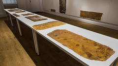 Tejas Verdes: I was not there - Installation Photos (Birkbeck Media Services / Dominic Mifsud) Tags: 3june15july2016 birkbeckuniversityoflondon chile chileanartist liviamarin margaritapalacios tejasverdesiwasnotthere thepeltzgallery abstractrealistobjects artinstallation collaborativeproject exdetentionandexterminationsites exhibition itinerantexhibition materialremains representingviolence traces