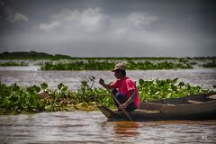 Cambodia -  Tonle sap lake - paddling4 (Rui Trancoso) Tags: cambodia siem reap tonle sap lake river fisherman vietnamit emigrant