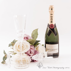 A champagne and roses celebration (Sue_Todd) Tags: autumn celebration champagne colours cream creamy drink flowers green moetchandon months photographer pink pinkrose pinkroses roses september suetodd suetoddphotography vegetation greenish greens greeny groen grn grn grnn grn pembe pinkki pinks roosa rosa rose rosy roze rozig rowy vaaleanpunainen verdajn verde vert vihre yeil zielony