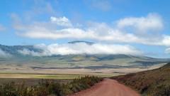 NgoroNgoro Safari Tour (tor-falke) Tags: africa afrika africalandscape afrique afrikanwildlife african landschaft landscape paysage himmel blauerhimmel sky bluesky wolken nuages clouds ngc natur nature tansania biosphärenreservat wolke hügel hill berg mountain outdoor