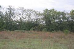 IMG_2920 (Annie Aguirre) Tags: ecp elkhart county parks park benton spillway nature birding birders people walk walks fall