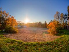 Ei mitn (MikeAncient) Tags: hdr tonemapped tonemap 5exp mntsl finland suomi syksy fall autumn foliage syksynlehdet puu puut tree trees sun aurinko auringonlasku sunset sunshine