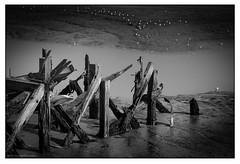 Old pier and white birds (derek_michalski) Tags: bw blackandwhite biancoynegro monochrome derekmichalskiphotography fineartphotography nikon naturallight leefilter longexposure le 15stops