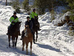 Out for a... (Vidar Ringstad,Skedsmo) Tags: ri trees winter shadow horses brown sun white snow cold green sol nature sunshine weather norway canon eos norge frozen vinter google nice europa europe flickr frost track ride natur helmet norwegen images 7d scandinavia sti brun rir hester gardermoen sn pent trr hjelm solskinn skygge redbrown skandinavia grnt kaldt hvit rytter trkk vollen naturepic frossen vr naturbilde rdbrun moreppen vidarringstad