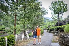 TSP_1605 copy (sonnyp_65) Tags: sunset vacation india mountain station garden waterfall tea hiking kerala resort hills valley teagarden hillstation munnar