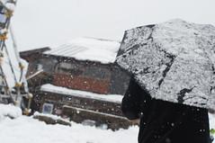 DSC_0466-yuki-no-naka (Konstantin Leonov) Tags: winter snow   shirakawago shirakawagou   gifuken   gifuprefecture shirakawamura