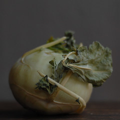 kohlrabi, square (postbear) Tags: food white green kitchen vegetables leaves flesh square rind leaf skin vegetable cabbage edible cabbages kohlrabi robfordasshole destroycraigslist robfordisanasshole robfordandstephenharperaredisgustingbigots robfordisalyingsackofshit allconservativesarefilth likeallbulliesrobfordisachickenshitcoward robfordisafraidofeverything robfordisastupidbitch marywalshformayororprimeminister thenewmapfunctionisterrible robfordhasneonazisforfriends foundoutreadingisdifficult robfordisadisgustingfuckingthief thenewuploaderisalsoterrible helpourformermayorisastupidclown formermayorrobfordlikescottaging call911theformermayorsbeatinghiswifeagain richwhiteconservativesbuyjusticeyetagain robfordsexuallyassaultswomen itcamefromplanetk
