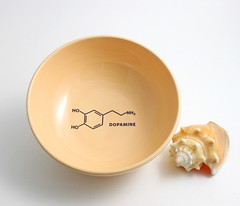 Dopamine Molecule Bowl in Peach (lltownley) Tags: art psychiatry ceramics brain science doctor chemistry drugs pottery medicine etsy molecule psychiatrist dopamine psychologist neurotransmitter