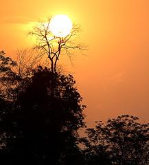 Sunset in the land of sunrise (Monsoon Lover) Tags: life sunset sun india love nature forest evening flickr lohit arunachalpradesh sudipguharay