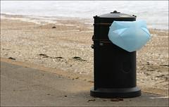 059airbag (michaela a. gabriel) Tags: england beach butterflies newport april monkeys brook needles owls wight shanklin sandown coastalpath ryde alumbay carisbrooke freshwaterbay tennysondown