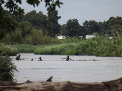 River Nile (vincentello) Tags: river south sudan nile nil juba sudsoudan