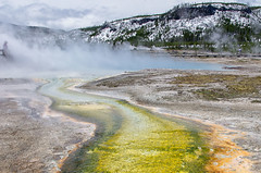 Midway Geyser Basin (dbushue) Tags: nature landscape nikon basin steam textures yellowstonenationalpark boardwalk algae wyoming geyser thermal 2012 ynp midwaygeyserbasin coth supershot absolutelystunningscapes damniwishidtakenthat coth5 sunrays5 dailynaturetnc13