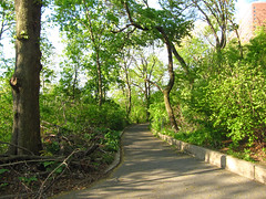 Morningside Park, 7:40 a.m., 3 May 2013 (jschumacher) Tags: nyc morningsidepark