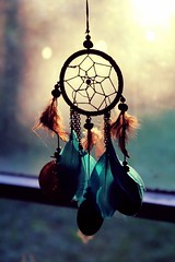 Dream Catcher (MLainger) Tags: dream catcher