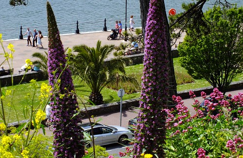 Torquay Seafront in Colour