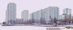 Merihaka panorama (Jori Samonen) Tags: buildings trees waterfront pier ice pano panorama merihaka helsinki finland