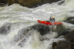 Kayaker at Great Falls 2 (Patrick Gregerson) Tags: kayak rapids greatfalls outside outdoor recreation thrilling 2016 august cocanal canon7d centennial maryland nps nationalhistoricalpark nationalparkservice hiking historic natural sunny water canonefs18200mmf3556is rocks exciting invigorating terrifying awesome fear xgames sport frothing whitewater river extreme danger energy activity boat white male adventure nature man wet joy risk waterfall fun exercise challenge healthy helmet
