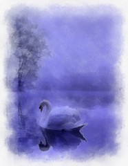 swan lake (alanpeacock2) Tags: swan reflection blue violet watercolour painting penandink birds waterbirds