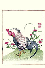 Thistle and domestic fowl (Japanese Flower and Bird Art) Tags: flower thistle cirsium asteraceae bird domestic fowl gallus phasianidae toko okada nagasaki woodblock picture book japan japanese art readercollection