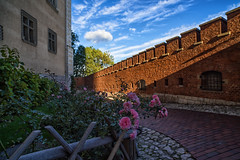 Wawel Castle Symbolism (lncgriffin) Tags: krakow cracow poland polska europe europa wawelcastle roses castle fortifiedwalls historic travel nikon d750 zeiss distagon distagon2128zf hdr