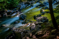 Sol Duc River (Abhijit B Photos) Tags: portangeles washington unitedstates us river water silky smooth longexposure solducriver solducwaterfalls olympicnationalpark nationalparks nationalpark flowingwater outdoor nature serene peaceful
