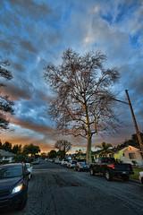 IMG_0171 (penfoto) Tags: 2013 california downey dusk sunset nearlakewoodblvd