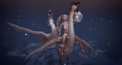BA - the search begins (~ oudicca ~) Tags: avatar secondlife virtualworld maitreya 3d windlight firestormviewer digitalart digital catwa anc belleepoque fantasy bird