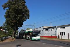 Solaris O-Bus (Hannes Eisenach) Tags: solaris urbino obus eberswalde bbg nahverkehr pnv vbb
