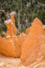 Balanced Rock Hoodoos (Serendigity) Tags: brycecanyonnationalpark outdoors usa hoodoos unitedstates landscape utah nature