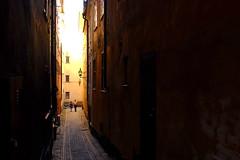 Marriage (foxxyz) Tags: stockholm sweden gamla stan gamlastan europe scandinavia street streetscene alley