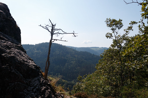 Le Karlsruher Grat (alt. 753m) à Ottenhöfen