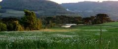 campo de flores (Jakza) Tags: jakza campo rural lago montanhas
