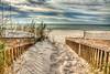 Sandy Walk (grandalloliver) Tags: november beach nature canon landscape island raw florida wideangle hdr perdido topaz perdidokey photomatix canonefs1755mmf28usm garyoliver rebelxsi canonxsi topazadjust grandalloliver grandalloliverphoto