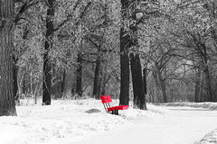 'Ice'olated Bench  {Explored} (Garry9600) Tags: trees winter blackandwhite snow canada monochrome bench lumix spring day winnipeg manitoba explore 1000views selectivecolour cans2s fz200