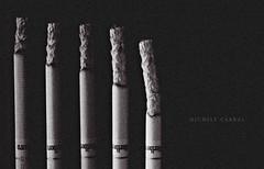 Buy Vogue menthol silver cigarettes Vogue