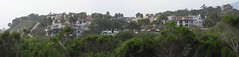 IMG_7835_4 130323 bacara resort remodel goleta california ICE rm stitch99 (ceztom) Tags: california rescue beach santabarbara march marine pacific east 23 geology sealion sandpiper channel bluff goleta ellwood shorebird haskell bacara 2013