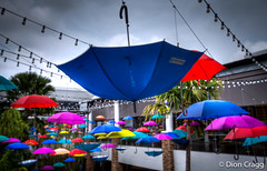 Upside Down (Dion Cragg) Tags: color colour umbrella thailand bangkok parasol umbrellas parasols brolley digitalcameraclub