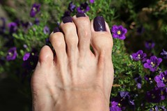 Zoya Monica (IPMT) Tags: man men zoya toes purple polish monica barefoot
