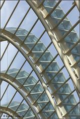 Profile (Ria Rotscheidt) Tags: sun valencia spain blauw calatrava zon glas spanje turia profiel rivierbedding stadvankunstenwetenschappen