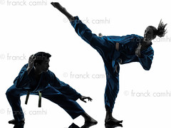 karate vietvodao martial arts man woman couple silhouette (Franck Camhi) Tags: shadow 2 two people woman white man male sports girl silhouette female cutout pose asian person one 1 vietnamese exercise fulllength young couples martialarts indoors karate whitebackground kungfu uniforms studioshot posture fighting facetoface adults kicking twopeople isolated position caucasian fightingstance exercising highkick vietvodao combativesport
