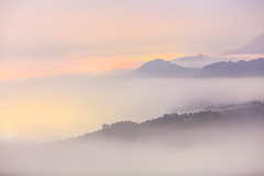(samyaoo) Tags: light cloud mist mountain tree green yellow fog night sunrise long exposure taiwan    sunmoonlake seaofclouds nantou