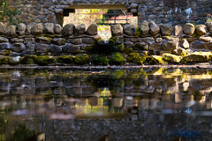 The Wall (entangleone) Tags: bridge reflection water wall scotland arch level monteviot d3100