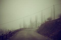 Si te veo (laororo) Tags: road silhouette fog empty silueta niebla valldecards