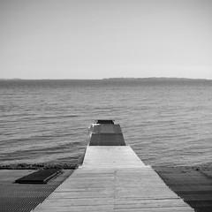 Le festin #2 (The smiling monkey) Tags: sea mer pier denemark