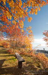 Enjoying the Fall Colors on Lake Superior (Bridget Calip) Tags: morning camping autumn lake fall minnesota bench dawn midwest picnic fallcolor lakes northamerica blueskies lakesuperior sunnyday 2012 picnictable redleaves autumnsun yellowleaves picnicbench orangeleaves goldleaves bridgetcalip