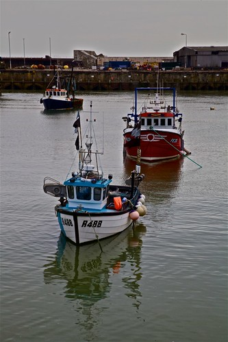 Trawlers in Harbour