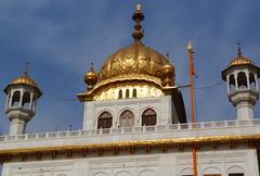 India (smithp500) Tags: india sikh amritsar goldentemple akaltakht